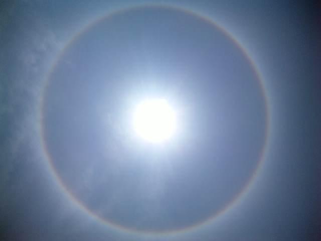 「虹 丸」の画像検索結果