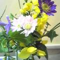 お花いろいろ。
