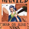 紅蓮海賊団 藍髪のナナ