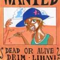 紅蓮海賊団 青帽子のドリム・リハビ
