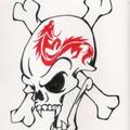 緋龍海賊団 海賊旗